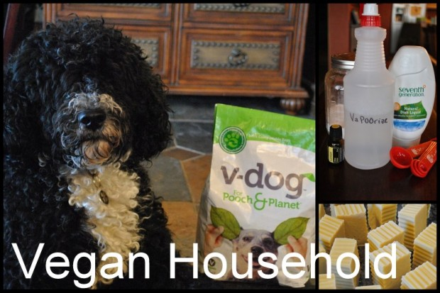 Vegan Household