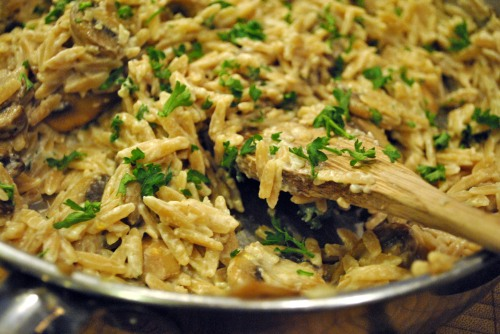 Mushroom Orzotto