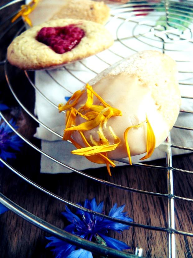 Madeleines au citron et framboises 1