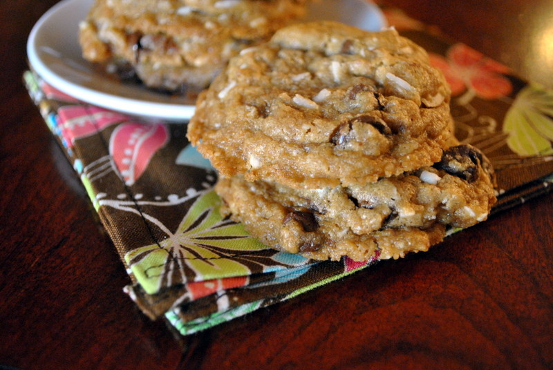 chocolate chip cookies tropical chocolate chip tropical chocolate chip ...