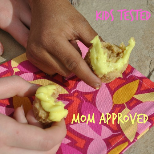 Cupcakes Kid Tested